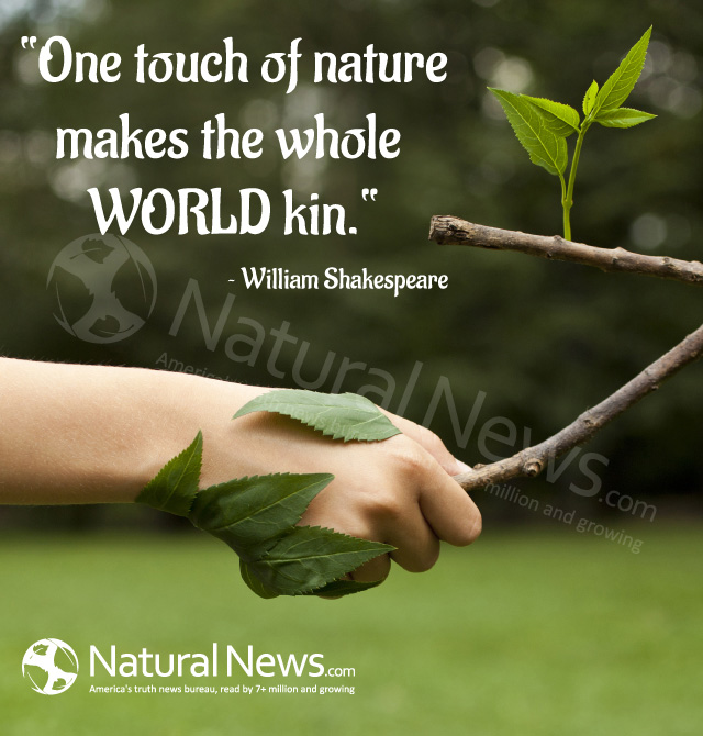One touch of nature makes the whole world kin – Shakespeare
