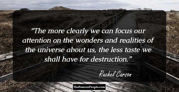 """""""The more clearly we can focus our attention on the wonders and realities of the universe about us, the less taste we shall have for destruction"""" – Rachel Carson"""