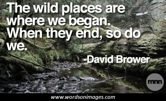 The wild places are where we began.  When they end, so do we.  – David Brower